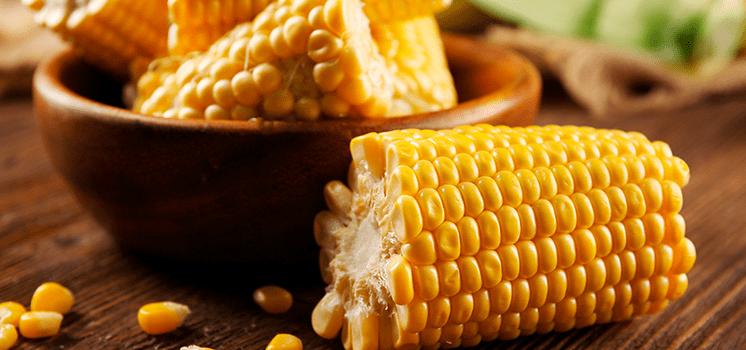 Creme de milho Dia Nacional do Milho Gazin