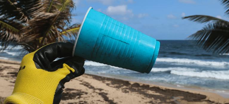 No Dia Internacional da Limpeza, que tal limparmos o Planeta?