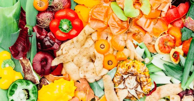 Como aproveitar todo o alimento, economizar e se alimentar bem