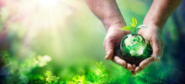 Semana do Meio Ambiente – Como cuidar melhor do nosso planeta.