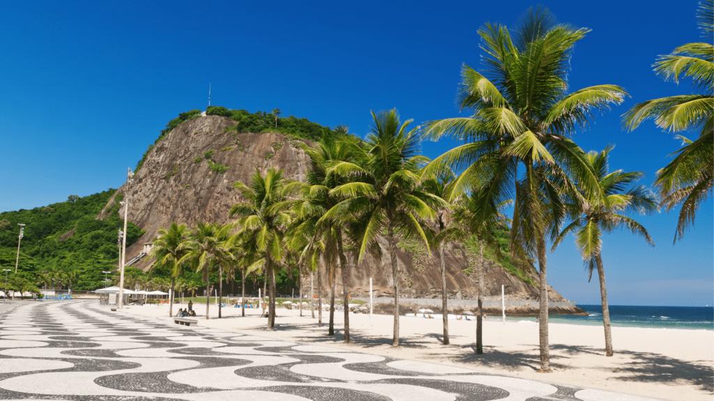 Foto da calçada com coqueiros em frente ao mar.